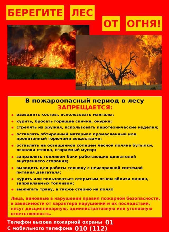 Картинки по запросу пожары в лесу памятка